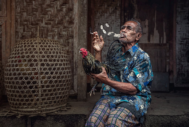 """A Balinese man shows off his pride and joy, a fighting cock, while on a cigarette break after a morning's work in nearby fields"". (Photo by Coltrane Koh/The Guardian)"