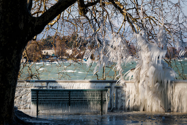 An ice covered bench is pictured at the frozen shore of Lake Geneva during a windy winter day, in Geneva, Switzerland, 26 February 2018. Media reports state that extreme cold weather is forecast to hit many parts of Europe with temperatures plummeting to a possible ten year low. (Photo by  Valentin Flauraud/EPA/EFE)