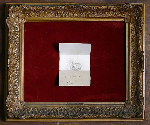 Lock of hair from the 'Hero of Two Worlds' Giuseppe Garibaldi is displayed in an old frame in the Museum of Domenico Agostinelli in Dragona, near Rome October 30, 2014. (Photo by Tony Gentile/Reuters)
