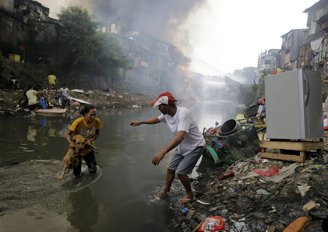 Residents save their pet dog as a huge fire rages along a creek in the suburban Quezon city north of Manila, Philippines, on New Year's day Thursday, January 1, 2015. A huge fire, believed to have been ignited by firecrackers, razed hundreds of shanties in the slum Thursday in one of more than a dozen fires reported across the country as Filipinos welcomed the New Year. (Photo by Bullit Marquez/AP Photo)