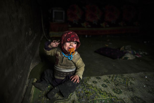 A refugee Afghan girl cries as she sits in their only room in a slum in Lahore January 12, 2015. (Photo by Zohra Bensemra/Reuters)