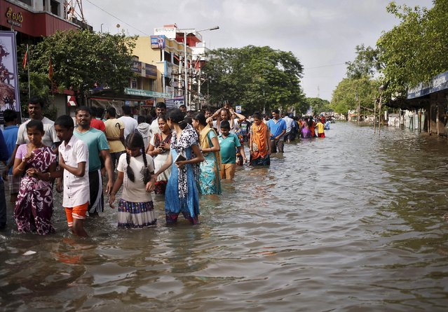 Residents wade through a flooded street as they evacuate their homes in Chennai, in the southern state of Tamil Nadu, India, December 3, 2015. (Photo by Anindito Mukherjee/Reuters)