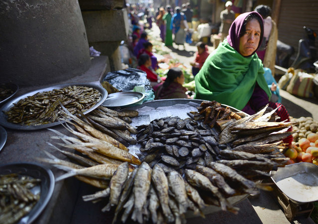 A Manipuri woman sells smoked and dry fish in Ima market - the world's largest all women market - in Imphal city, Manipur state, 06 January 2016. The 150-year-old Ima Keithel or 'Mothers's market' complex, which is run exclusively by women and was damaged in the 04 January 2016 earthquake, is returning back to normal. Nine deaths have been reported from in and around Imphal due to falling debris. (Photo by EPA/Stringer)