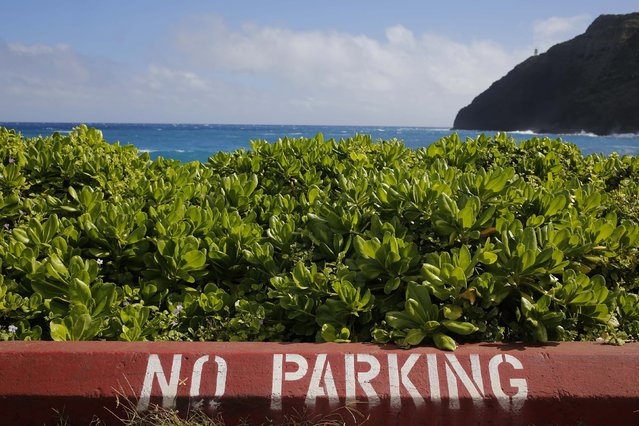 A no parking sign turns motorists away from a view on the coastline southeast of Honolulu, Hawaii December 27, 2015. (Photo by Jonathan Ernst/Reuters)