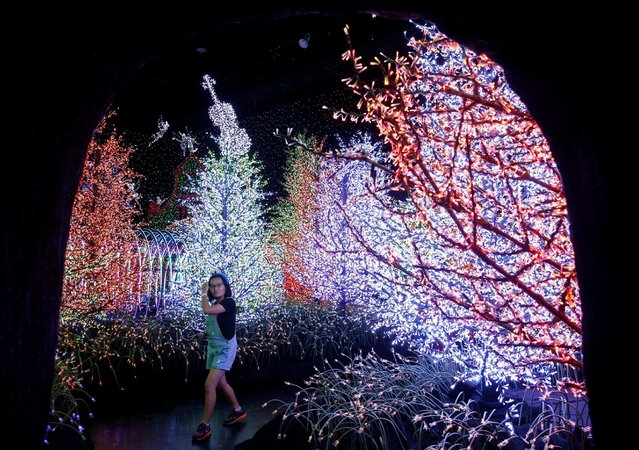 A woman tours a Christmas attraction featuring a display of more than 800,000 light bulbs in Universal Studios Singapore December 12, 2016. (Photo by Edgar Su/Reuters)