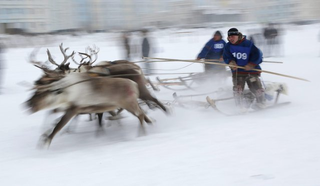 In this photo taken on Sunday, March 15, 2015, Nenets men compete in a reindeer race at the Reindeer Herder's Day in the city of Nadym, in Yamal-Nenets Region, 2500 kilometers (about 1553 miles) northeast of Moscow, Russia. (Photo by Dmitry Lovetsky/AP Photo)
