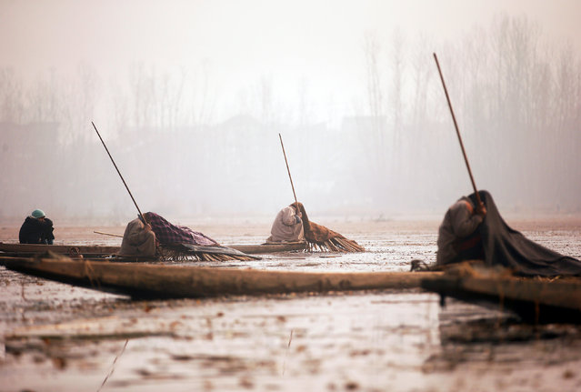 Kashmiri fishermen cover their heads and part of their boats with blankets and straw as they wait to catch fish in the waters of the Anchar Lake on a cold day in Srinagar, December 20, 2016. (Photo by Danish Ismail/Reuters)
