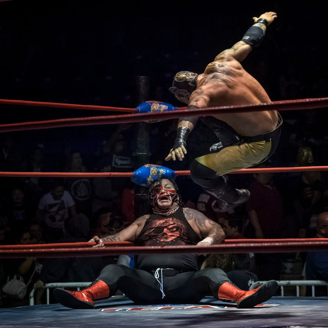 A typical gravity defying moment of action during a Lucha Libre match – the Mexican version of professional wrestling taken by Louis Montrose. (Photo by Louis Montrose/Travel Photographer of the Year)