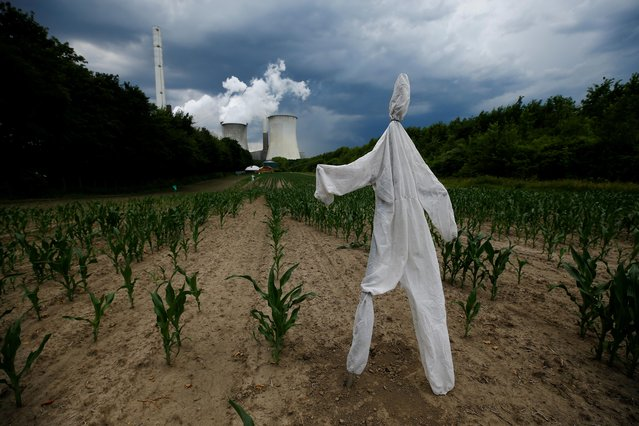 A scarecrow stands in a corn field in front of the Neurath coal power plant of German utility RWE in Neurath, west of Cologne, Germany, June 19, 2019. (Photo by Wolfgang Rattay/Reuters)