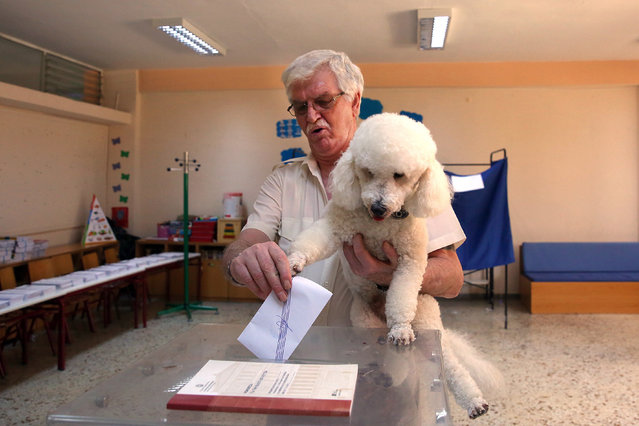 A man, holding his dog, casts his vote during the general elections at a polling station, in Athens, Greece, 07 July 2019. Greek voters go to the polls on 07 July to cast their ballots in the Greek general elections. (Photo by Orestis Panagiotou/EPA/EFE)