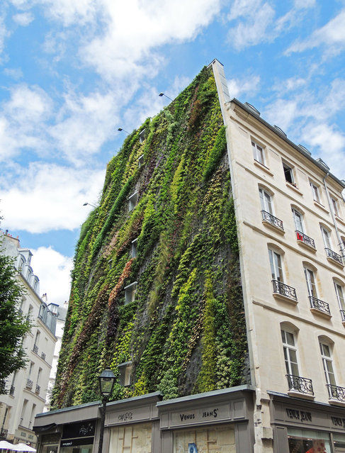 Vertical Garden - By Patrick Blanc in Madrid, Spain