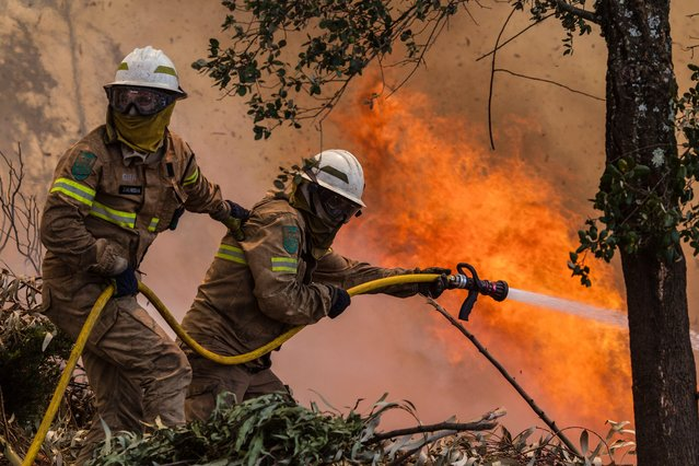 Firefighters battle with a fire in Vale das Porcas, Alvaiazere, central Portugal, 18 June 2017. At least sixty two people have been killed in forest fires in central Portugal, with many being trapped in their cars as flames swept over a road on the evening of 17 June 2017. (Photo by Paulo Cunha/EPA)