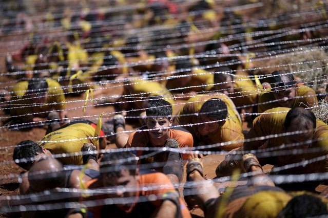Competitors crawl under barbed wire during the Bravus Race in Brasilia, August 2, 2015. (Photo by Ueslei Marcelino/Reuters)
