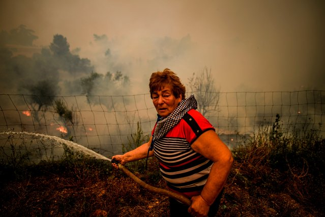 A villager uses a water hose to put out flames during a wildfire in Roda village in Macao, central Portugal on July 21, 2019. Planes and helicopters joined nearly 2,000 firefighters in central Portugal on July 21, 2019 to battle huge wildfires in a mountainous region where more than 100 people died in huge blazes in 2017. Around 20 people have been injured in the blaze, including eight firefighters and 12 civilians, according to the interior ministry. (Photo by Patricia De Melo Moreira/AFP Photo)