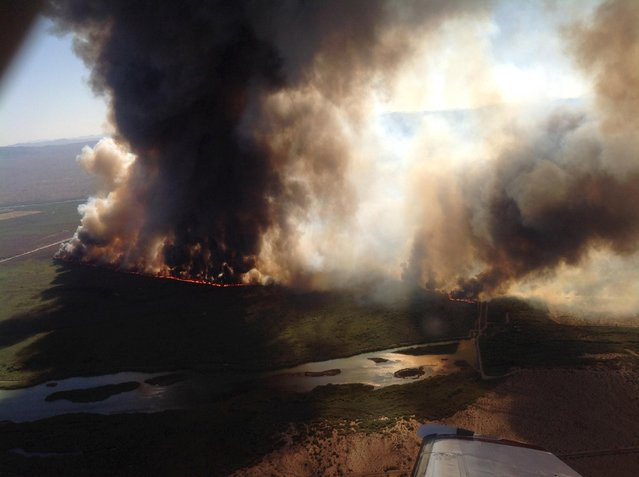 The Willow fire is shown burning across northwestern Arizona in this handout photo taken August 8, 2015 and released to Reuters August 10, 2015. (Photo by Reuters/Incident Air Attack/U.S. Forest Service)