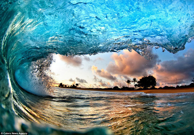 The most beautiful pictures of waves we've ever seen by Nick Selway/CJ Kale