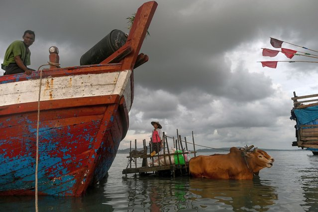 This photo taken on October 1, 2019, shows people using a bull cart to transport goods from a boat at Japanma jetty in Kyaukphyu, Rakhine State. (Photo by Ye Aung Thu/AFP Photo)