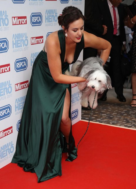 Ashleigh Butler and Sully the dog attends the Animal Hero Awards 2017 at The Grosvenor House Hotel on September 7, 2017 in London, England. (Photo by Mike Marsland/WireImage)