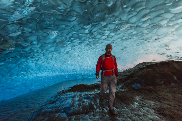 Daniel Fox inside the Mendenhall Glacier, in September 2014, in Juneau, Alaska. Driving in an open-roofed jeep is no longer the fashionable way to see wildlife – as this adventurer shows. (Photo by Daniel Fox/Barcroft Media)