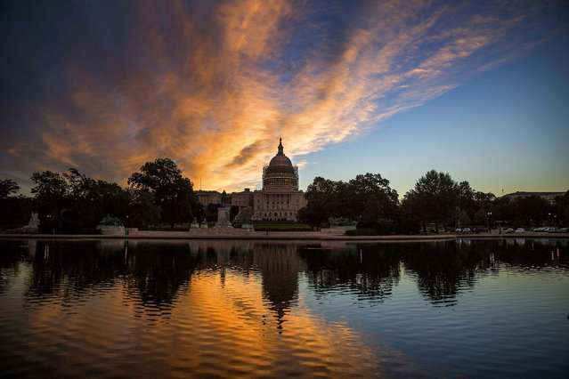The U.S. Capitol building, with scaffolding around its dome as part of a restoration project, is seen at sunrise in Washington, on October 9, 2014. (Photo by Doug Mills/The New York Times)