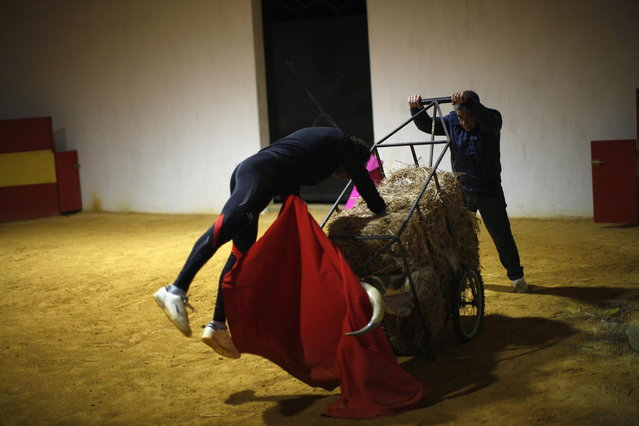 Spanish bullfighter Rafael Tejada (L) drives the sword into straw bales in a cart with bull horns pushed by his assistant Jose Maria San Nicolas during training at Reservatauro Ronda cattle ranch in Ronda, near Malaga February 12, 2013. Spain's parliament voted on Tuesday to consider protecting bullfighting as a national pastime, angering animal rights campaigners and politicians in two regions where the sport is banned. (Photo by Jon Nazca/Reuters)
