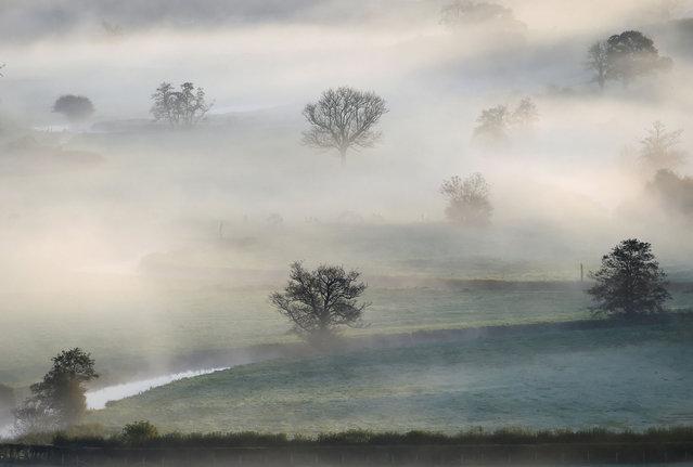 Mist in the fields near Landdowror, Wales, Britain on October 17, 2020. (Photo by Rebecca Naden/Reuters)