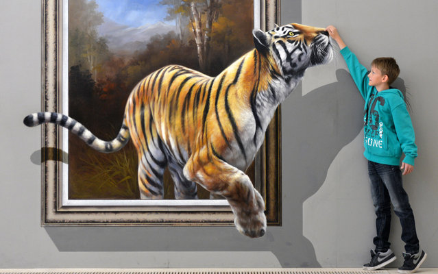 """Dustin poses next to an art work depicting a tiger and created in a special 3D-technique by a Chinese-Korean artist group on June 27, 2013 at the exhibition """"Du bist die Kunst!"""" (You are the Art!) at Augustusburg Palace in Augustusburg near Chemnitz, eastern Germany. Visitors are invited to take pictures of themselves interacting with the art and to share the results on social networks. The show is running until November 10, 2013. (Photo by Hendrik Schimidt/AFP Photo)"""