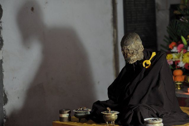 A mummified body of a monk is displayed during an unveiling ceremony at Puzhao temple in Quanzhou, Fujian Province, China, January 10, 2016. (Photo by Reuters/Stringer)