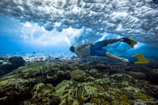 Mike diving beneath a shallow wave. (Photo by Mark Tipple/Caters News Agency)