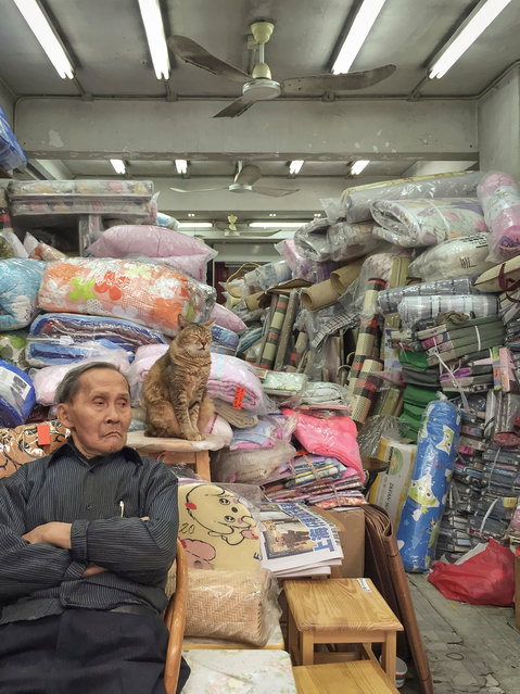 """Hong Kong Shop Cats #14. The self-taught photographer has previously made picture studies of weather walls and urbanisation. """"Hong Kong is a city with plenty of grit and grunge and I find that quite beautiful"""", he has said. (Photo by Marcel Heijnen/Blue Lotus)"""