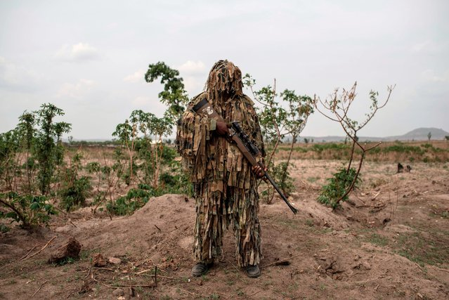 A member of the Nigerian Armed Forces Sniper Unit wearing a ghillie suit poses for a photo during the African Land Forces Summit (ALFS) military demonstration held at General Ao Azazi barracks in Gwagwalada on April 17, 2018. The African Land Forces Summit (ALFS) is a weeklong seminar held in Nigeria, bringing together land forces from across Africa to discuss and develop cooperative solutions and improve transregional security and stability. (Photo by Stefan Heunis/AFP Photo)