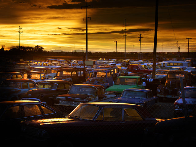 The sun sets over dozens of abandoned cars, in 2014, Colorado. (Photo by Dieter Klein/Barcroft Media)