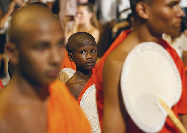 A Buddhist monk looks on as they march during the annual Nawam Perahera street parade in Colombo February 22, 2016. (Photo by Dinuka Liyanawatte/Reuters)