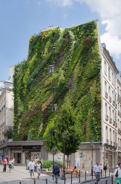 Vertical Garden - By Patrick Blanc in Madrid, Spain