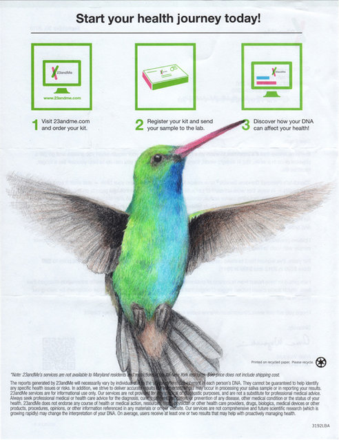"""""""But it also makes a playful commentary on predatory businesses and the role of lending institutions in the financial collapse, which was when I started drawing birds like this Hummingbird"""". (Photo by Paula Swisher/Caters News)"""