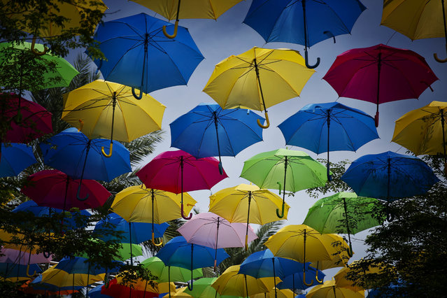 Umbrellas fill the sky in an art installation called Umbrella Sky on Monday, July 16, 2018, in Coral Gables, Fla. (Photo by Brynn Anderson/AP Photo)