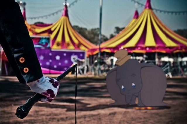 Dumbo faces up to life at the circus. (Photo by Jeff Hong)