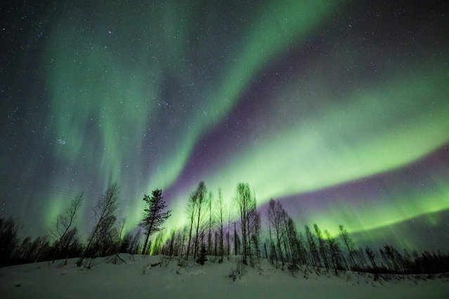 The Aurora Borealis (Northern Lights) is seen over the sky near Rovaniemi in Lapland, Finland, March 15, 2018. (Photo by Alexander Kuznetsov/Reuters)