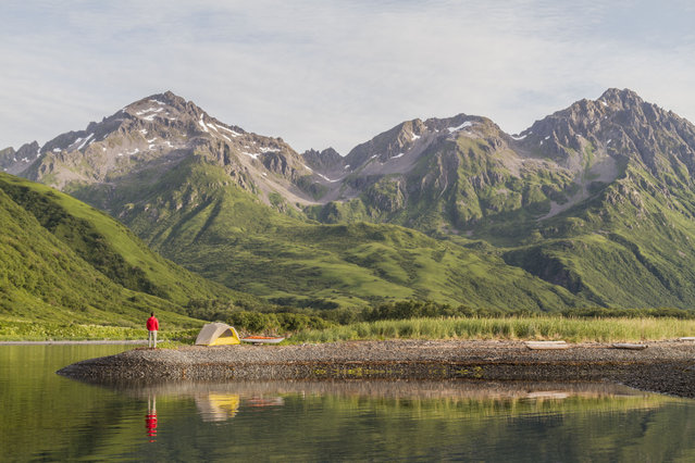 Daniel Fox pictured in the stunning green landscape at Three Saints Bay, in July 2014, in Kodiak Island, Alaska. Driving in an open-roofed jeep is no longer the fashionable way to see wildlife – as this adventurer shows. (Photo by Daniel Fox/Barcroft Media)