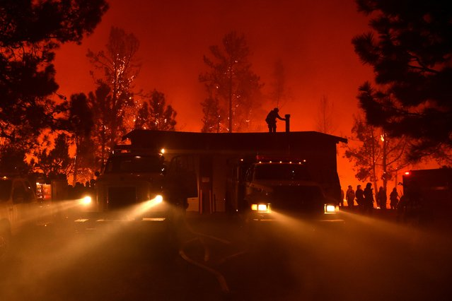 Firefighters attempt to save the Casa Loma fire station in the Santa Cruz Mountains near Loma Prieta, California on September 27, 2016. The Loma Prieta Fire has charred more than 1,000 acres and burned multiple structures in the area. (Photo by Josh Edelson/AFP Photo)