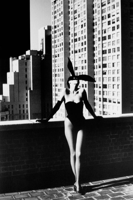 Elsa Peretti in Bunny Costume. (Photo by Helmut Newton)