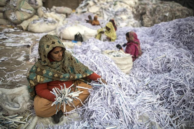A woman sorts papers before they are taken to a factory to be recycled in Lahore January 12, 2015. (Photo by Zohra Bensemra/Reuters)