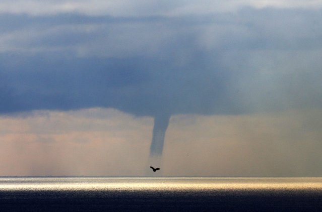 A waterspout forms on the horizon above the Mediterranean sea, off the coastal city of Nice on January 19, 2015. (Photo by Valery Hache/AFP Photo)