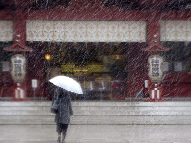 A woman walks in the snow at Kanda Myojin shrine in Tokyo, Thursday, November 24, 2016. Tokyo residents have woken up to the first November snowfall in more than 50 years. An unusually cold air mass brought wet snow to Japan's capital on Thursday. Above-freezing temperatures kept the snow from sticking, but forecasters said there could be an accumulation of up to 2 centimeters (1 inch). The last time it snowed in central Tokyo in November was in 1962. (Photo by Eugene Hoshiko/AP Photo)