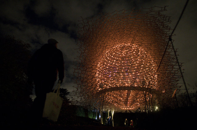 "People walk past Wolfgang Buttress' illuminated Hive Installation during a photocall at Kew Gardens in south west London, on November 22, 2016, during an event to promote the launch of the ""Christmas at Kew Gardens"" event. (Photo by Justin Tallis/AFP Photo)"