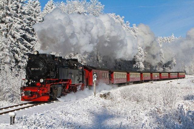 A train of a local narrow gauge train makes its way to the mountain Brocken on January 25, 2014, near Schierke, northern Germany. Meteorologists forecast temperatures around minus 10 degrees for the coming days in northern Germany. (Photo by Matthias Bein/AFP Photo/DPA)