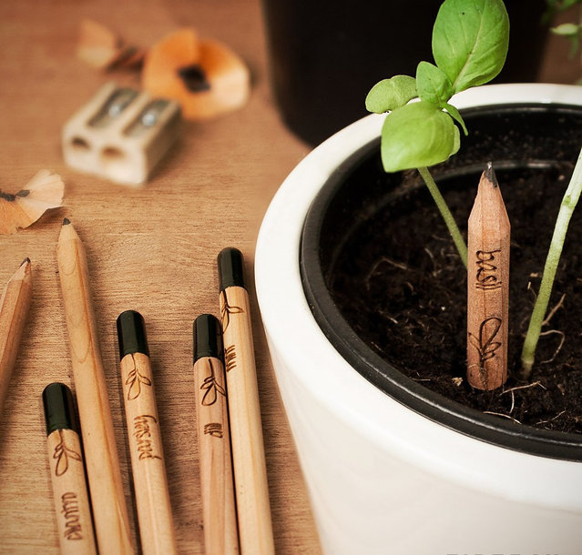 Sprout A Pencil That Grows