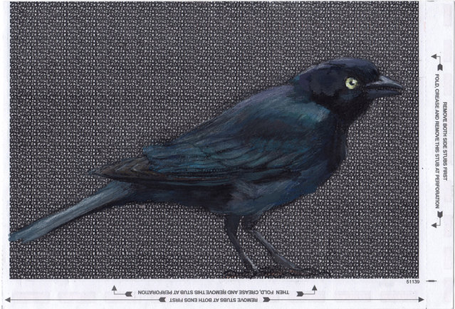 Paula started tearing out pages from old books and working in ball-point ink and white-out. I enjoyed working with the content of the pages, transforming the meaning of the text with what I drew on it. Blackbird on a back of jumk mail. (Photo by Paula Swisher/Caters News)