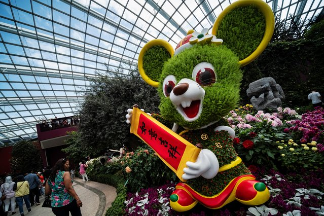 Visitors walk past a topiary-like sculpture of a rat in traditional Chinese attire at the annual Dahlia Dreams floral display which showcases plant sculptures of the 12 zodiac animals to mark the upcoming Lunar New Year of the Rat at Singapore's Gardens by the Bay, January 19, 2020. (Photo by Loriene Perera/Reuters)
