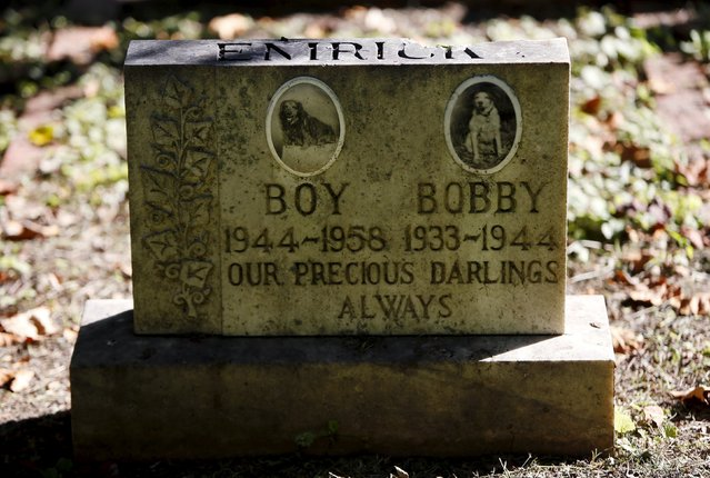 Two dog's headstone is seen at the Aspin Hill Memorial Park in Aspen Hill, Maryland, August 25, 2015. (Photo by Gary Cameron/Reuters)